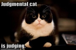 judgmentalcat
